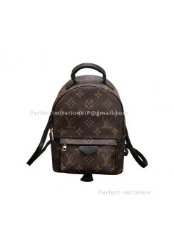 Louis Vuitton Palm Springs Backpack Mini M41562