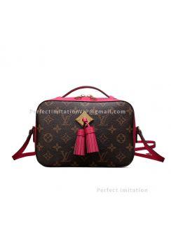 Louis Vuitton Saintonge M43557