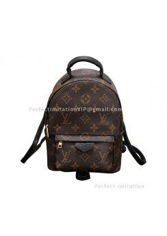 Louis Vuitton Palm Springs Mini M41562