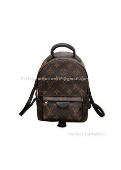 Ultimate Louis Vuitton Palm Springs Mini M41562